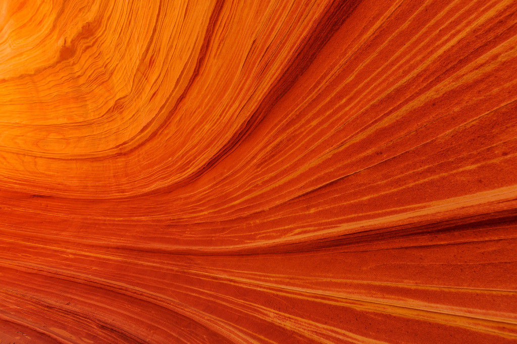 Swirling sandstone at The Wave in the Vermillion Cliffs Wilderness, Arizona, USA