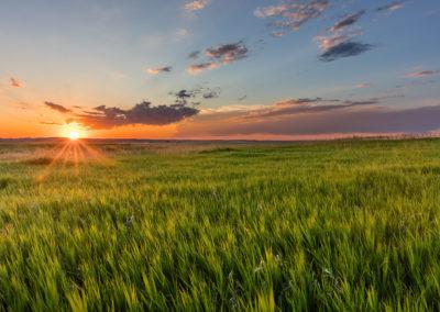 Grasslands of Badlands National Park, South Dakota, USA ©Chuck Haney