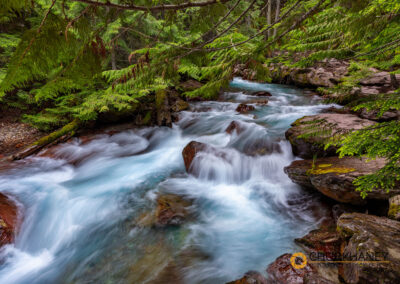 Avalanche Creek in Glacier National Park, Montana, USA