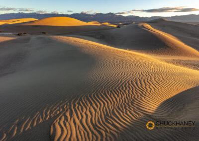 DV-Mesquite-Dunes_035-copy