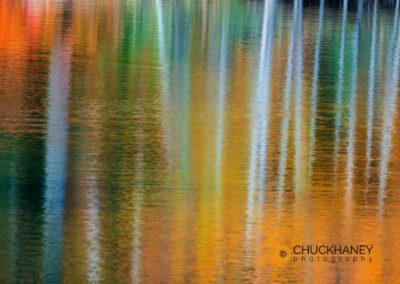 Marquette-Color_006-copy