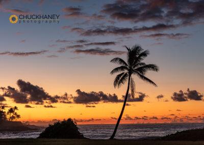 Poipu-Beach_003-copy